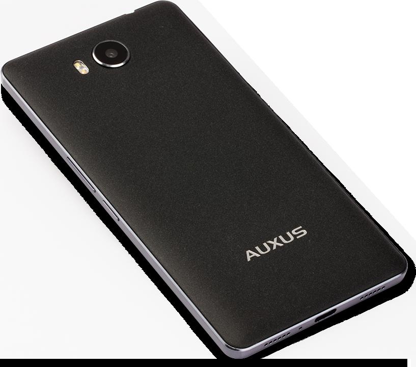 iBerry Auxus 4X